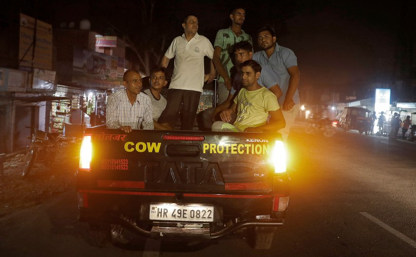 India Cow Protection